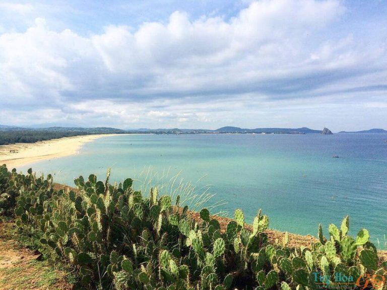 Du lịch Bãi Xép Phú Yên có gì đẹp?