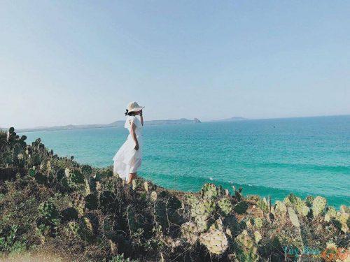 Du lịch Tuy Hòa: Cẩm nang mới nhất 2020
