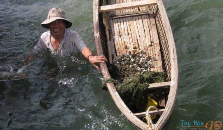 Ngư dân nơi đây hay nuôi trồng các loại thủy hải sản như cá, tôm hùm, hay những loài hải sản quý hiếm như cá ngựa, sò đá