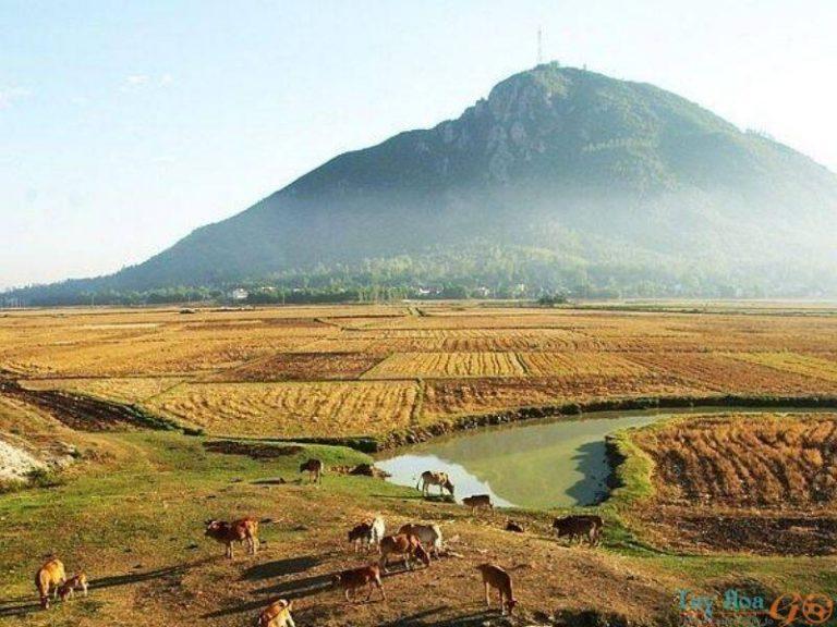 Núi Chóp Chài: biểu tượng thiêng liêng của mỗi người con Phú Yên