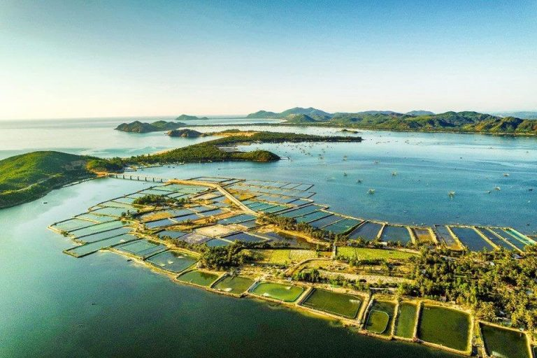Ghé thăm Vịnh Xuân Đài - một trong những vịnh biển đẹp nhất thế giới