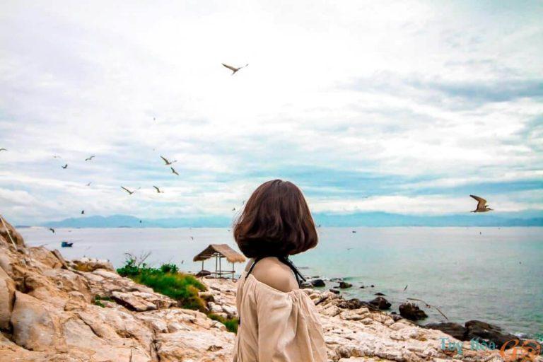 Đảo Yến Bình Định – Đẹp thơ mộng đến ngơ ngẩn lòng người