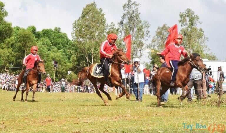 lễ hội đua ngựa