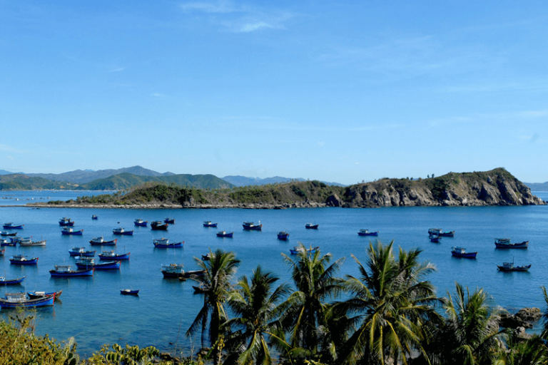 Vịnh Xuân Đài – Một trong những vịnh biển đẹp nhất Việt Nam