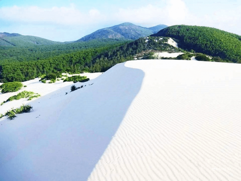 Đồi cát Từ Nham – Đứng giữa đồi cát trắng nghe biển hát