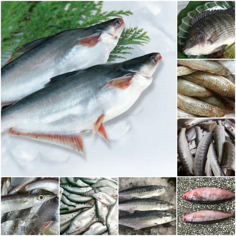 Chả cá Phú Yên - Ẩm thực bình dân xứ Nẫu