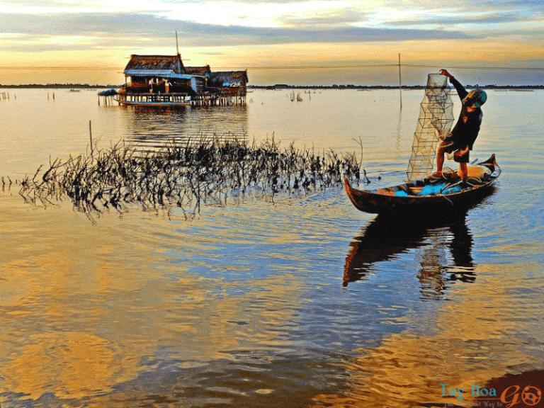 Bỏ túi kinh nghiệm du lịch Cà Mau, thiên đường giao thoa giữa rừng và biển
