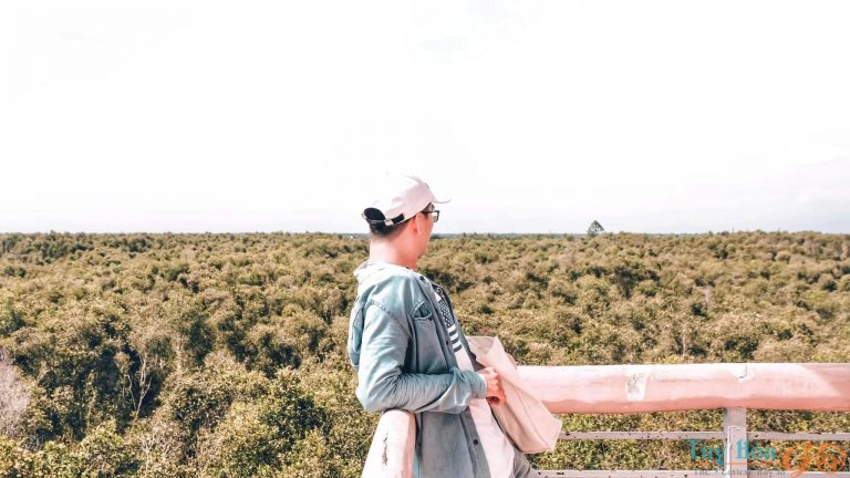Bỏ túi sổ tay kinh nghiệm du lịch Long An cho người mới đi lần đầu