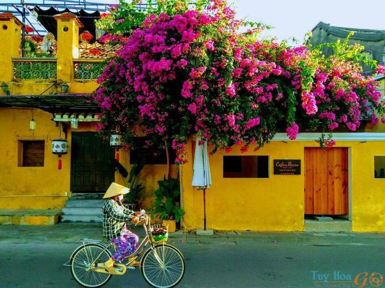 Những địa điểm tham quan khi du lịch Quảng Nam