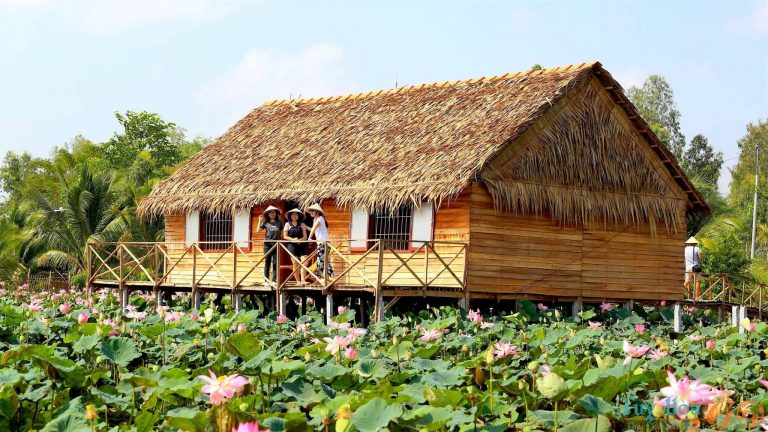 Tổng hợp kinh nghiệm du lịch Đồng Tháp, thủ phủ hoa sen thanh bình