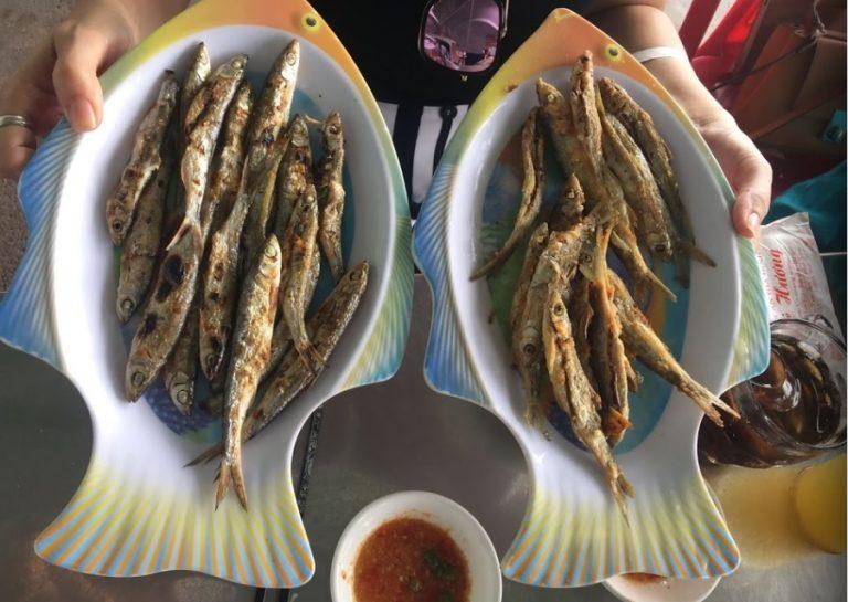 Kinh nghiệm du lịch Tuy An Phú Yên 13/10/2021